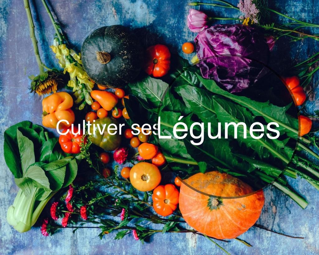 Le Potager et le Compost