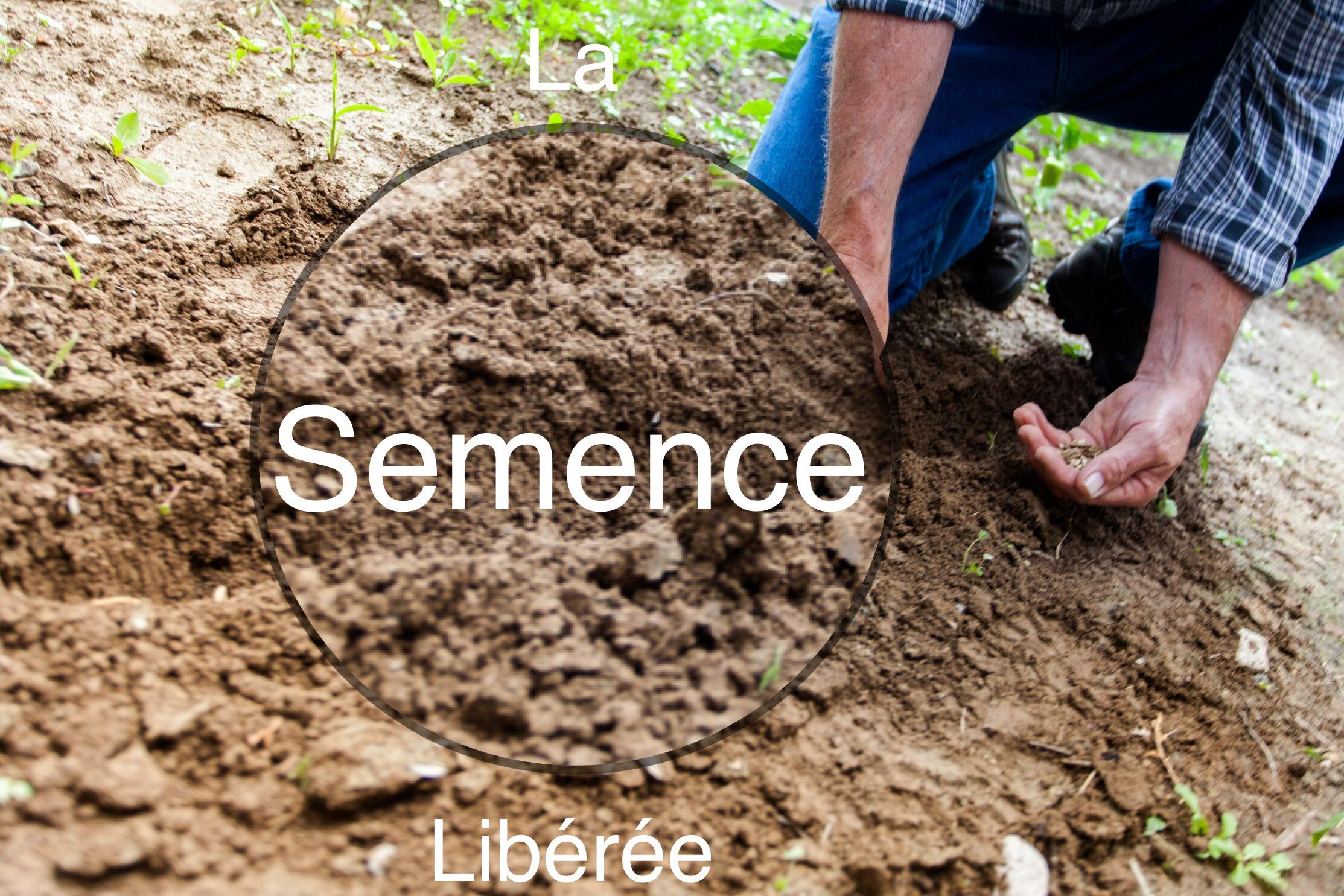 Que Faire Dans Le Potager En Fevrier le potager et le compost – ecosystainable